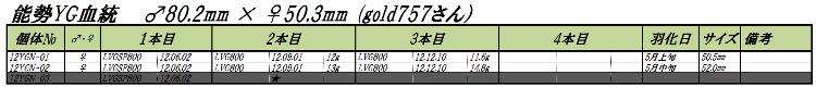 12能勢YGN1