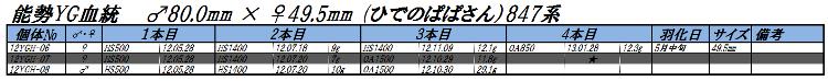 12能勢YGH2