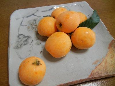 ビワon絵志野皿