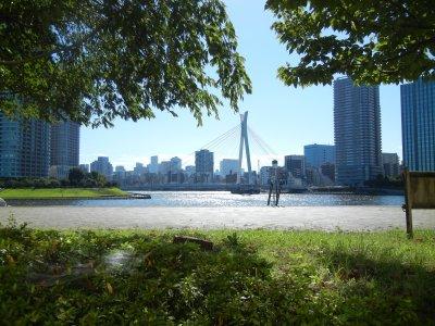 越中島公園から中央大橋を望む