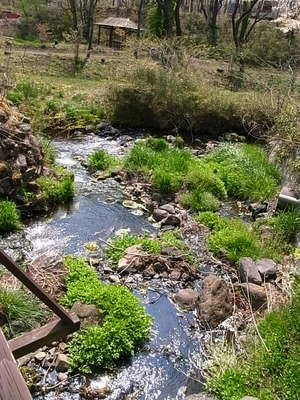 敷地内に流れる小川
