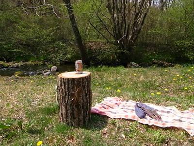 ピクニックでハイボール