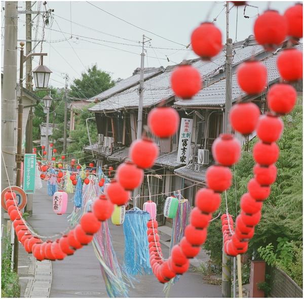 cf250-hassel-2014-4-27-fuzi160-ひまわり-墨俣-757840007_R