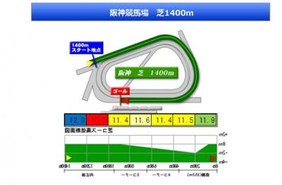 140412 阪神牝馬S