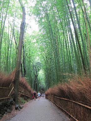 2014_0817京都・滋賀・レア旅行0031