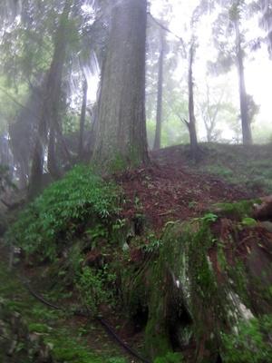 2014_0817京都・滋賀・レア旅行0075
