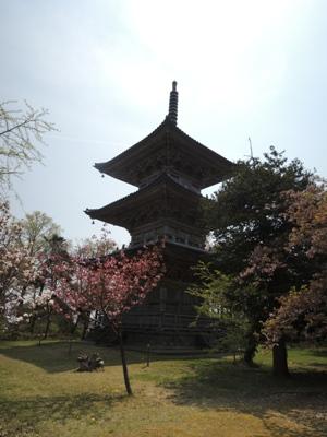 4月27日三重塔