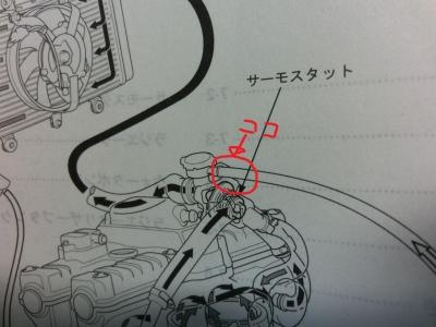 CIMG17331.jpg