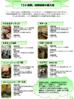 コト消費チラシ(裏_グリーン)