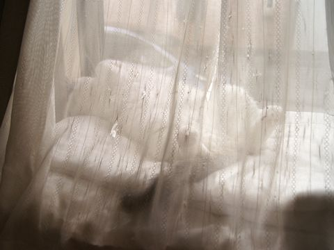 またカーテン越し