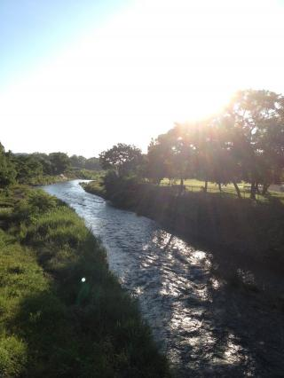 八王子の川。