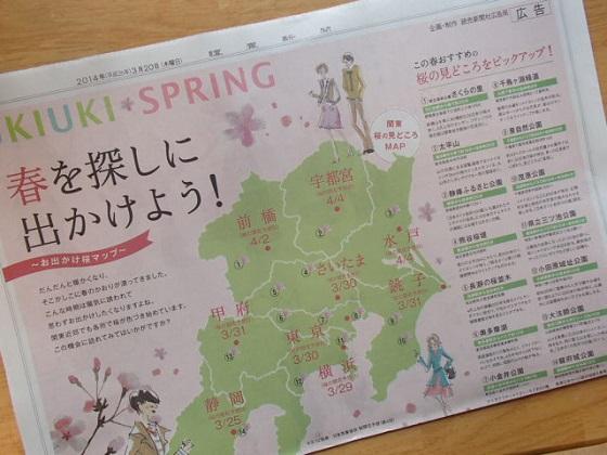 桜開花予報 (7)