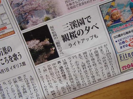 桜開花予報 (3)