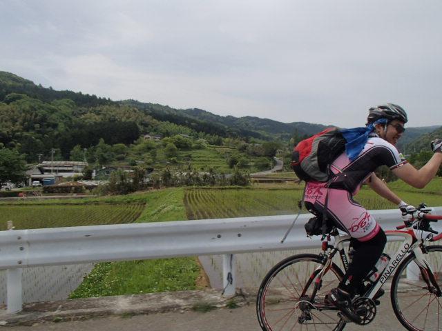 だるま山 (15)
