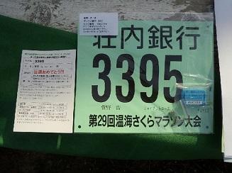 マラソン_ゼッケン