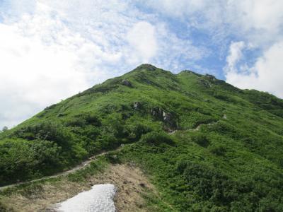 稜線への道