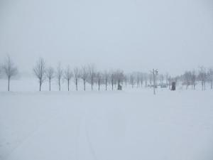 2014年2月高山ワンパラ 012