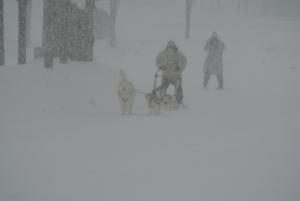2014年2月高山ワンパラ 038