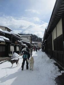 2014年2月高山ワンパラ 030
