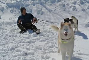 2014年2月16日23日犬橇練 004