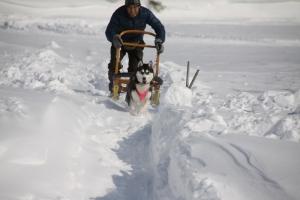 2014年2月16日23日犬橇練 021