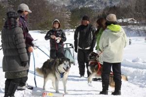 2014年2月16日23日犬橇練 016