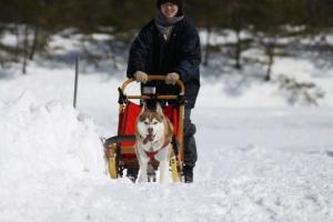 2014年2月16日23日犬橇練 046