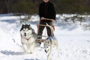 2014年2月16日23日犬橇練 039