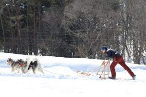 2014年2月16日23日犬橇練 037
