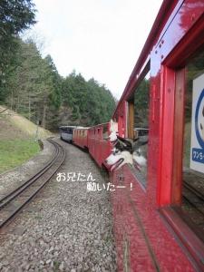 2013-03-伊豆 016a