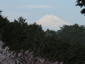 2013-03-伊豆 063