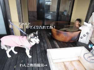 2013-03-伊豆 109