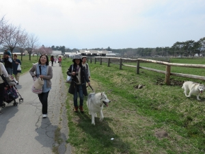 2014年5月GW蓼科・清里 073