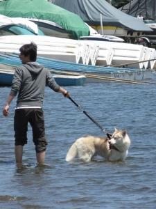 2014-05 山中湖 001 (86)