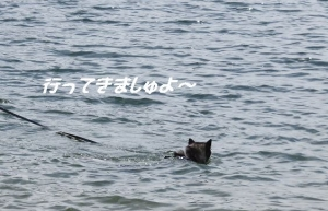 2013-05 山中湖 027a