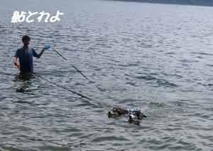 2013-05 山中湖 041a