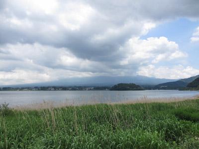 河口湖ハーブフェスティバル・大石公園