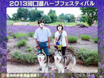 家族写真2013