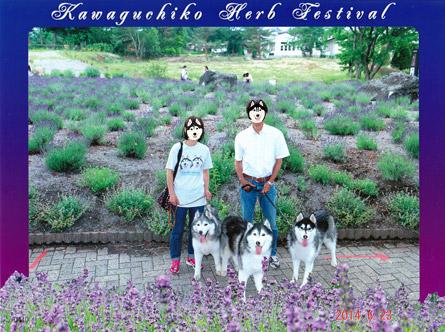 家族写真2014
