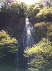 20140508CAAD10樽滝