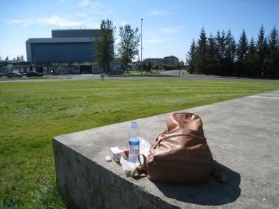 picnic-alone.jpg