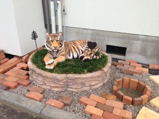 tiger_2.jpg