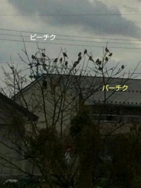 20140304085318ebf.jpg