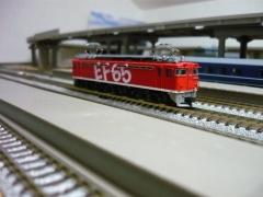 P1040142.jpg