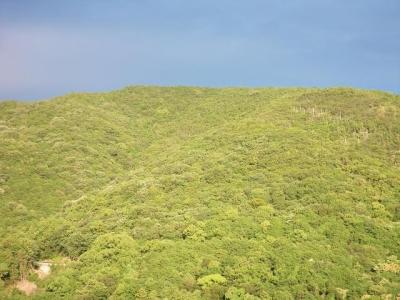 2013年6月12日朝熊山2