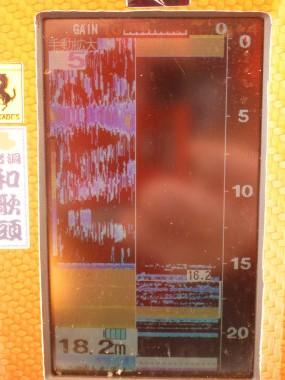 P1130718.jpg