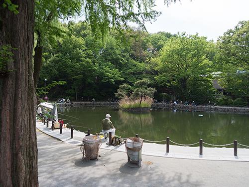fr_公園