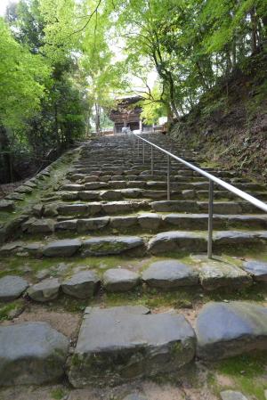 神護寺楼門までの石段