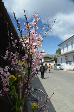 路地裏の花2