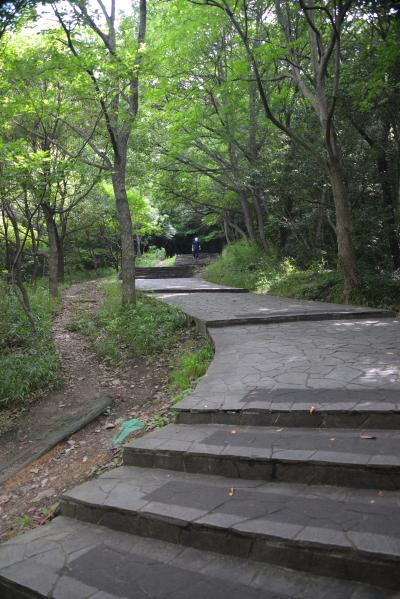 02登山道2
